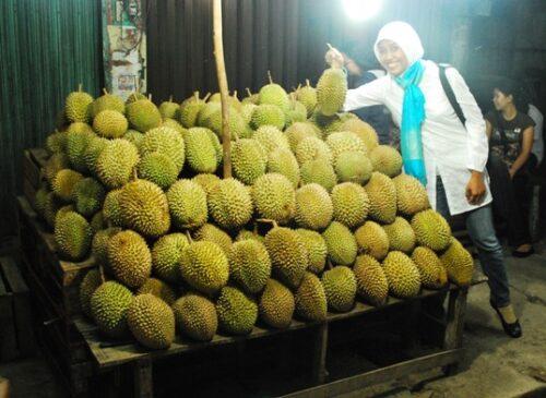Cerita Tentang Durian